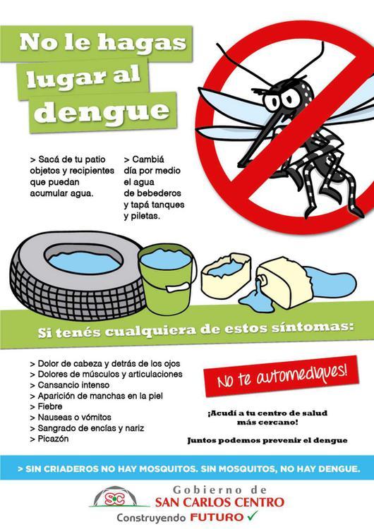 26112020-dengue